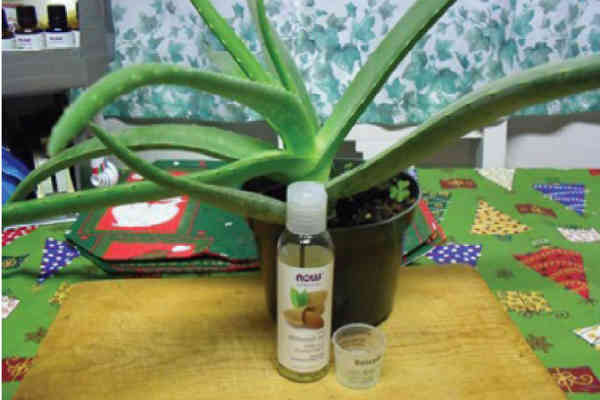 Aloe Eye Serum